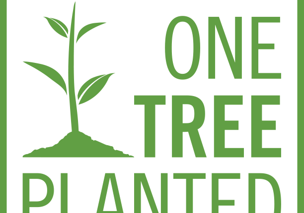 Planting Trees in BC in 2021